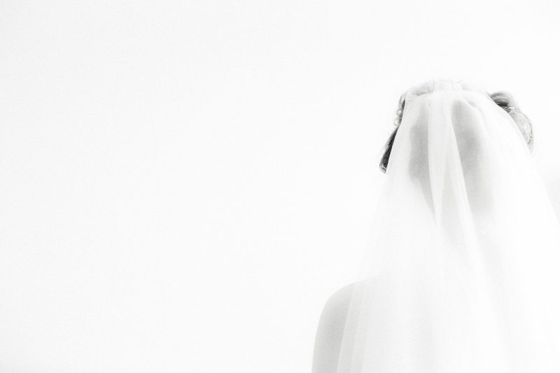 Rear view of bride in veil