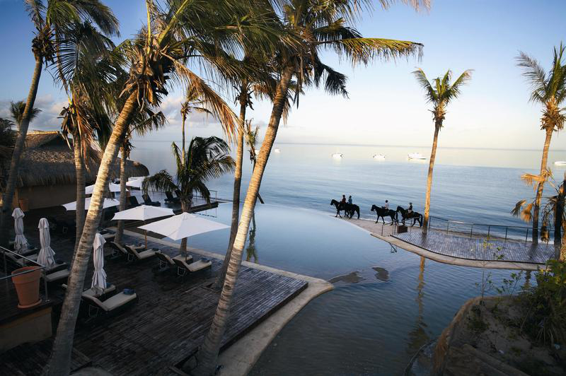 Horses ride along beach of tropical island resort