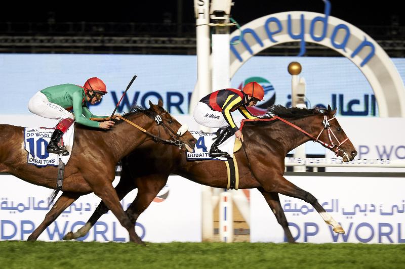 Horse crosses finish line at Dubai World Cup