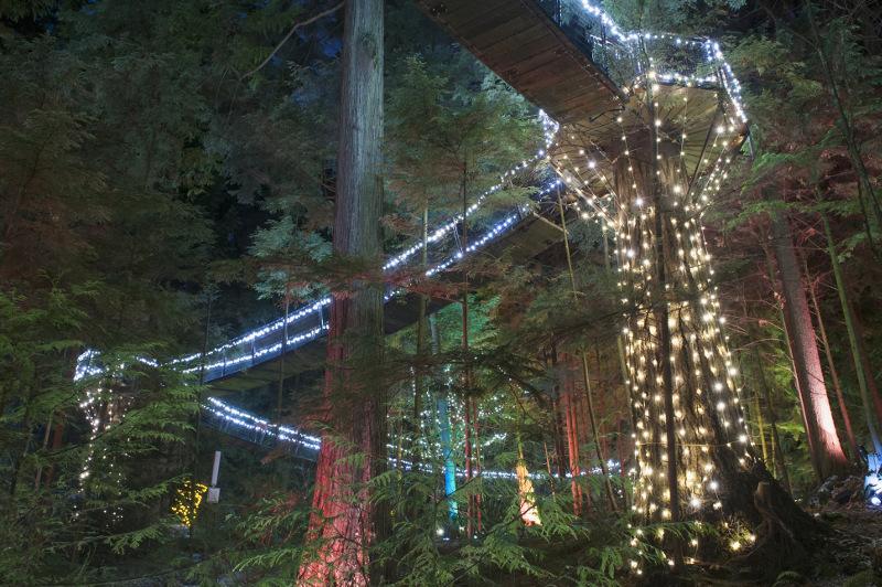 The Capilano Canyon Lights