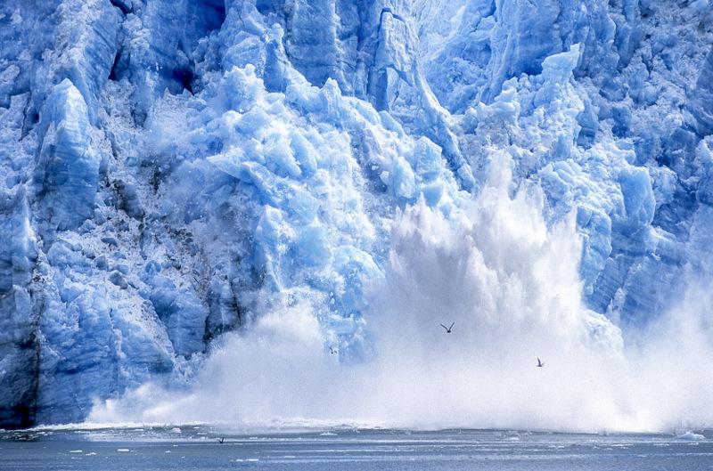 Glacier Bay calving Alaska