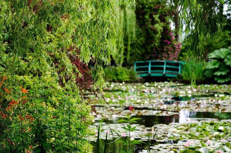 The Japanese bridge in Monet's garden
