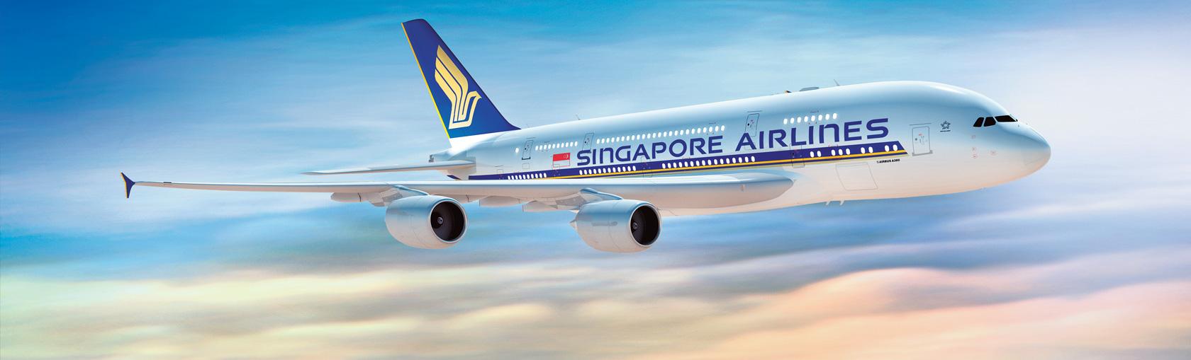 ผลการค้นหารูปภาพสำหรับ Singapore airline