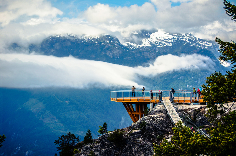 Beautiful lookout with background of snowy mountains and fir trees