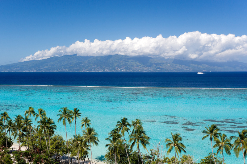 Pristine turquoise waters and palm trees at beach on Moorea Island