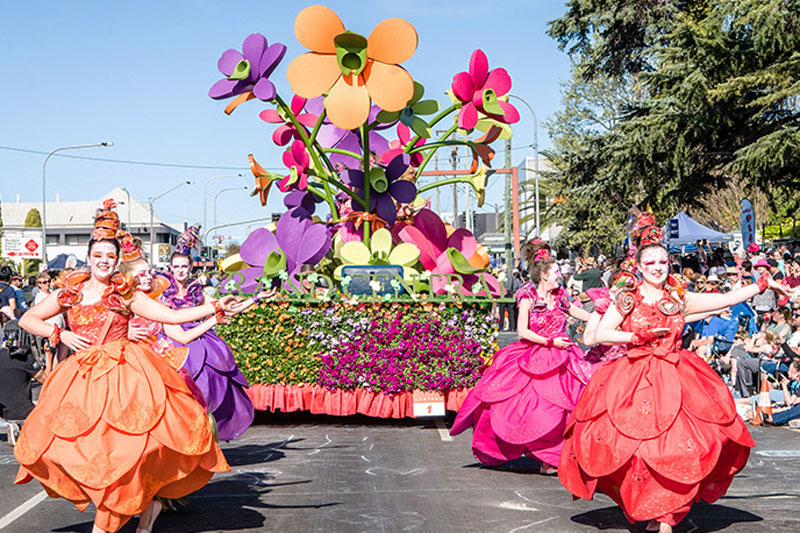 Carnival Of Flowers Food And Wine Festival