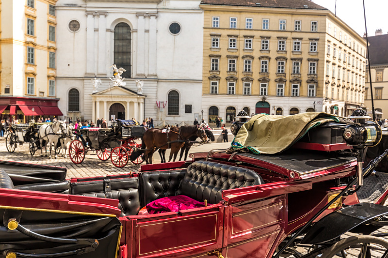 Vienna Horse and Carriage ride