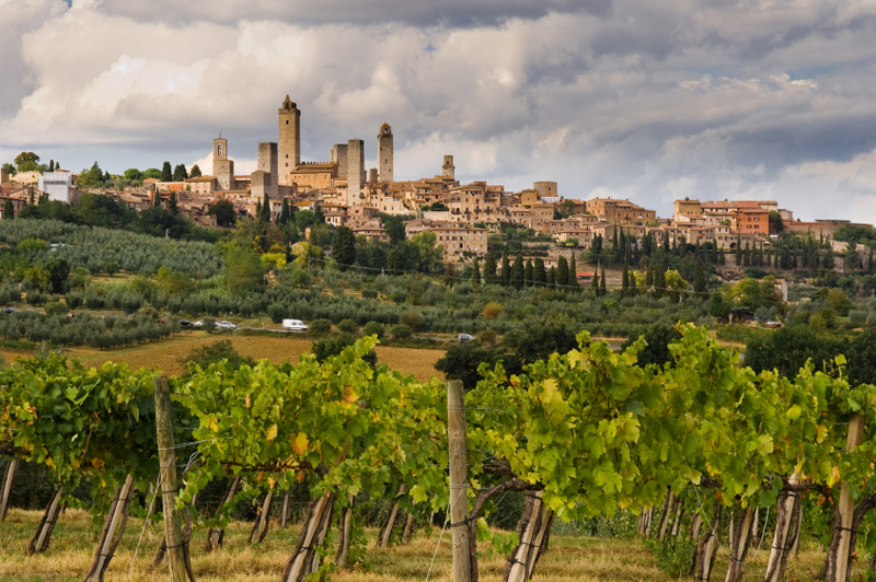 The vineyards surrounding San Gimignano, Italy. Image: Getty