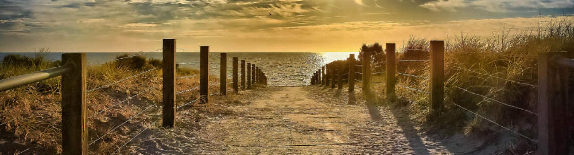 sunny beach grange