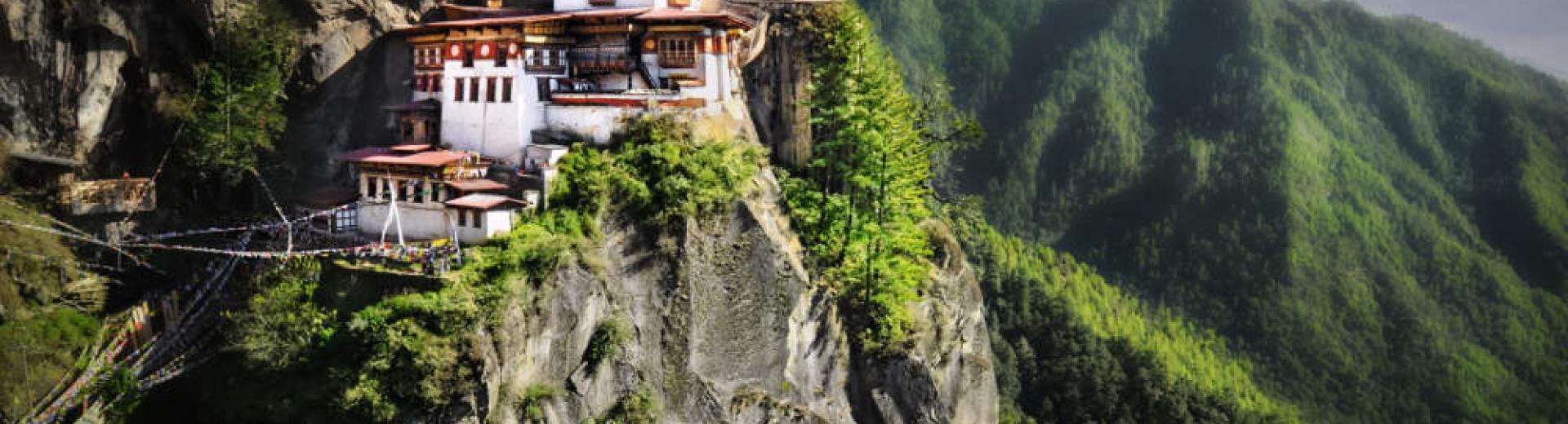 bhutan tigersnest