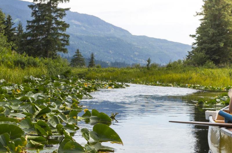 Woman on kayak in Whistler river