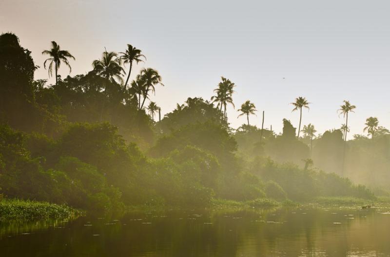 Kerala lake getty