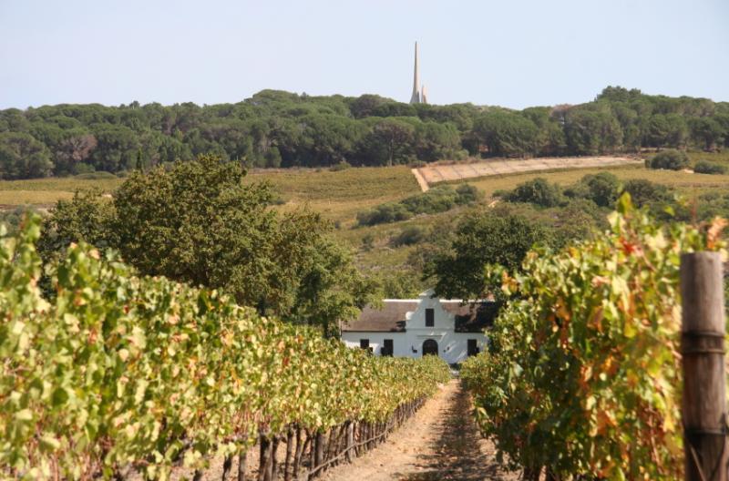 Paarl Wine Region South Africa