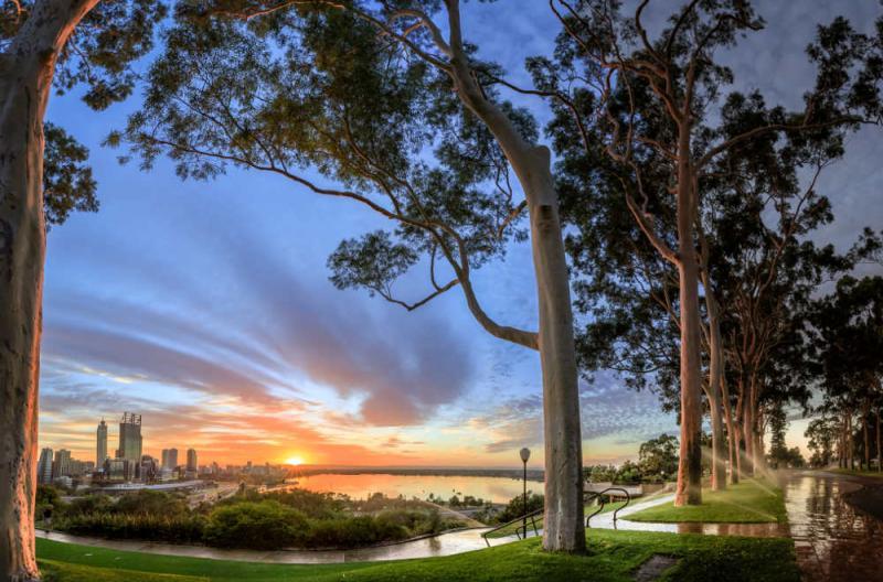 Perth kingspark getty