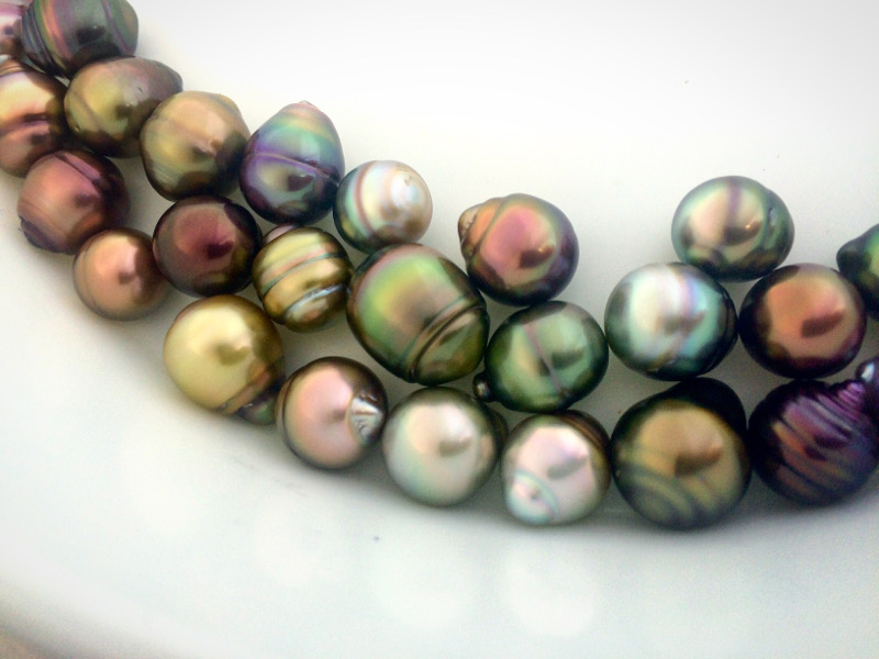 Fijian souvenirs and shopping, black pearls