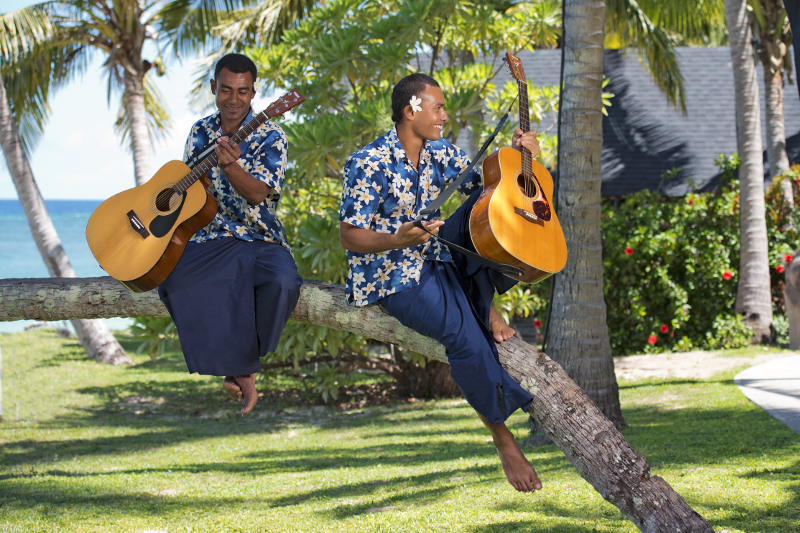 Serenaders in a coconut tree Tourism Fiji