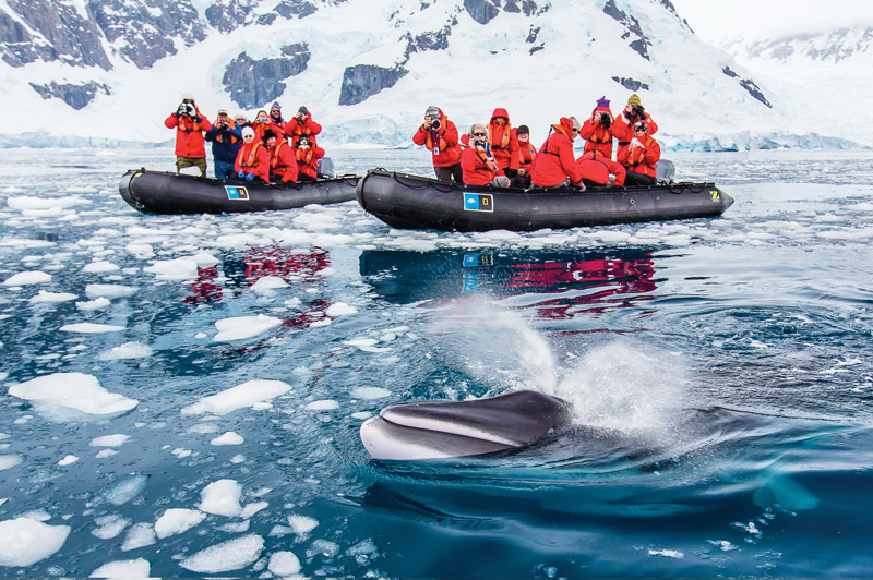 Zodiac excursion with Lindblad-National Geographic