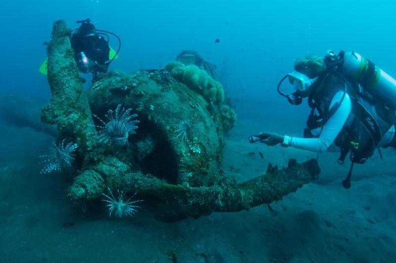 Exploring the wrecks in Solomons