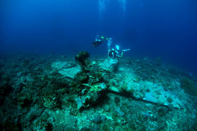 Dive beneath the surface in Solomon Islands Plane dive in Solomons