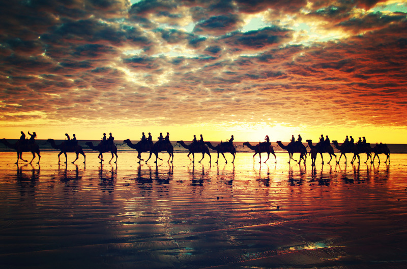 Sunset camelback ride along Cable Beach, Broome