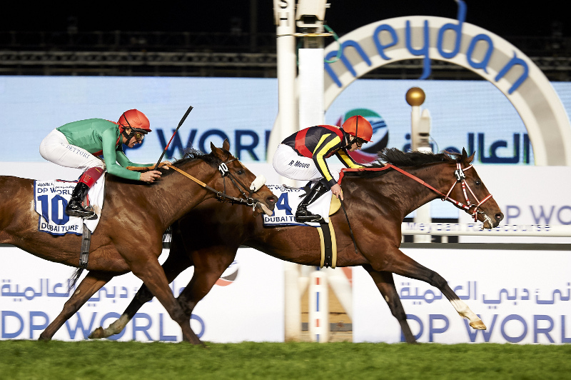 Horse crosses finish line at Dubai World Cup