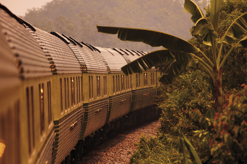 The Belmond Eastern Oriental Express passes by palm trees and jungle