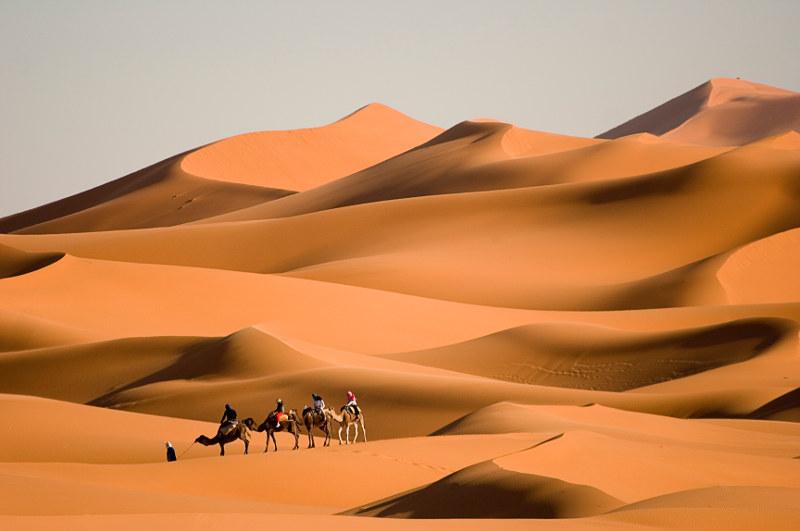 camel rides in Sahara sand dunes