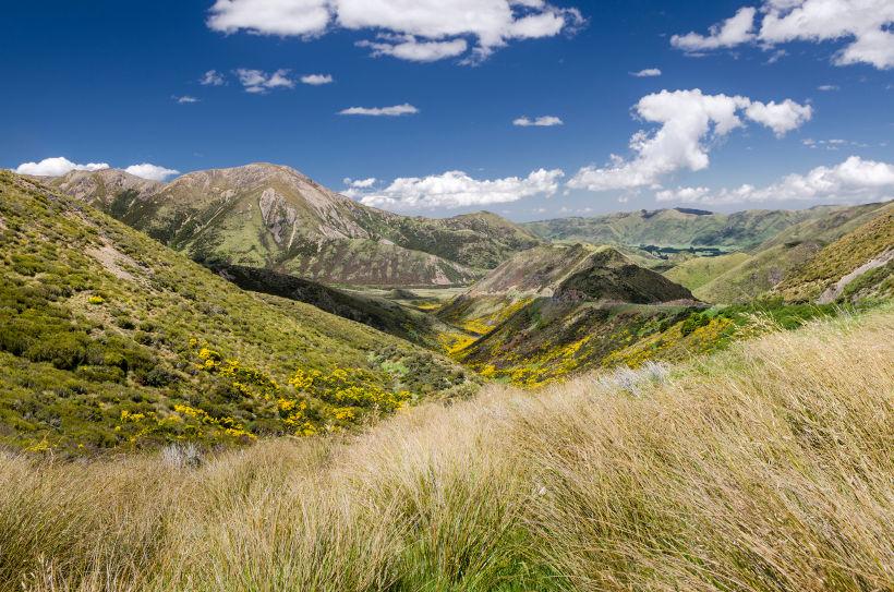 Travel Associates alpine scenery