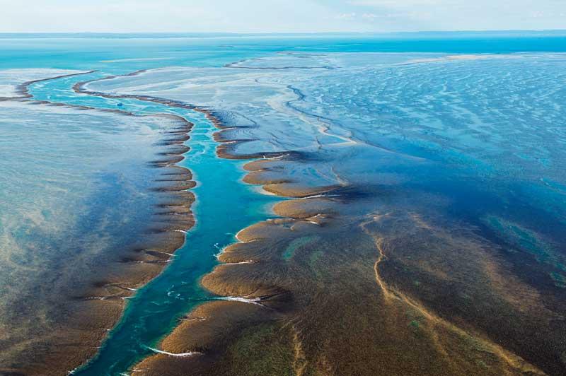Montgomery Reef, Kimberley, Australia