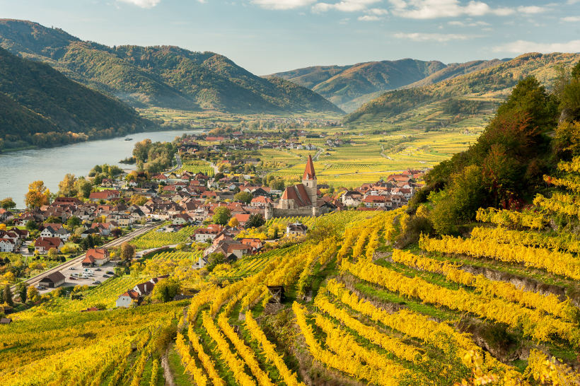 Travel Associates vineyards on hill with town below wachau valley austria