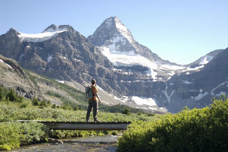 Mount Assiniboine Canadian Rockies