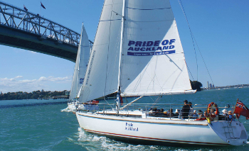 Pride of Auckland dinner cruise