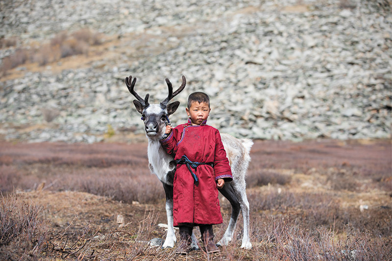 Reindeer Tribes of Mongolia