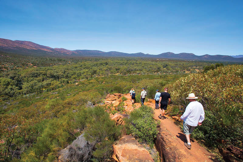 Arkaba Walk, South Australia