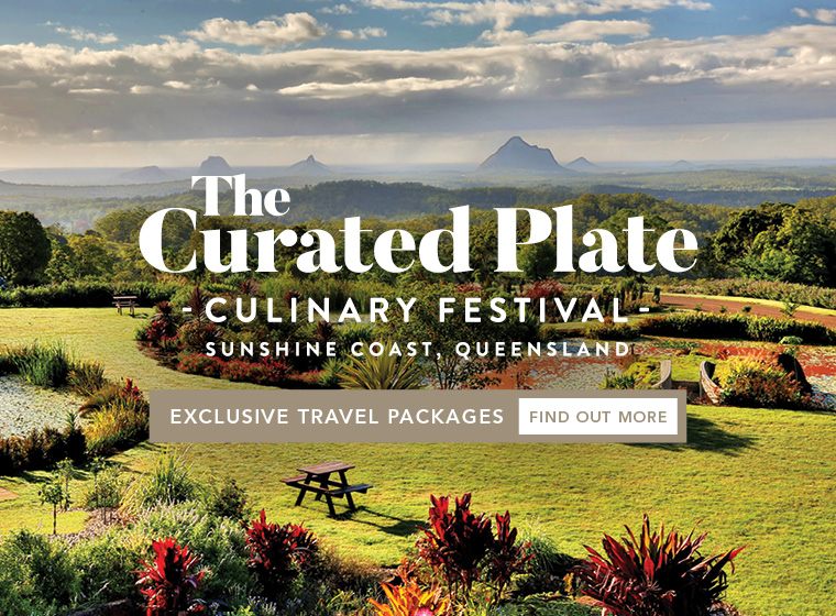 The Curated Plate