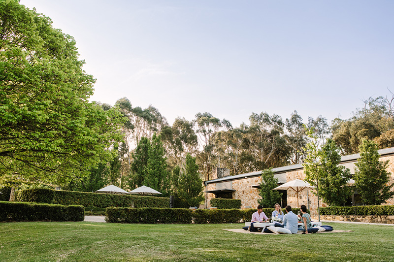 Golding Wines, Adelaide Hills Wine Region
