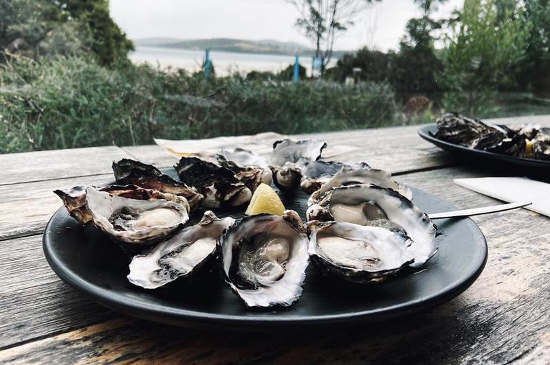 Get Shucked Oysters on Bruny Island, Tasmania (image credit @jellydhmin)