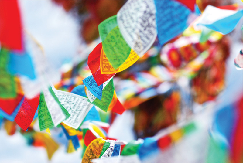 Tibetan Prayer Flags at Festival