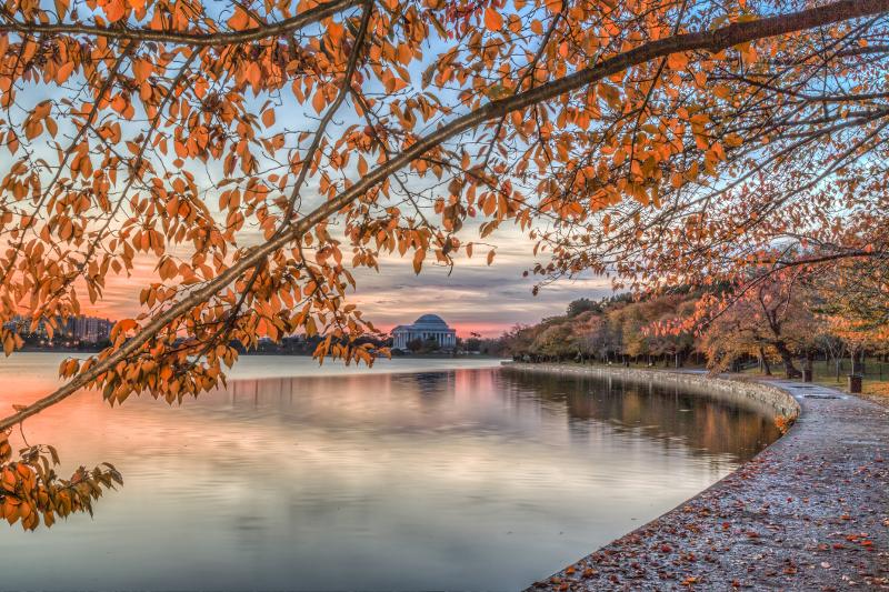 Washington Tidal Basin