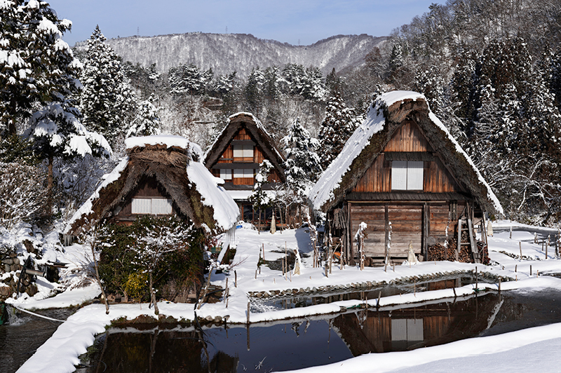 Shirakawago Farm Houses
