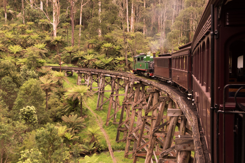 Puffing Billy in the Yarra Valley