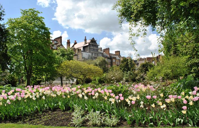 Chelsea Psychic Garden