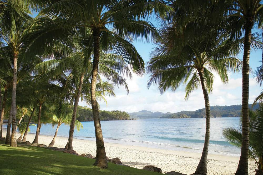 Catseye-Beach-landscape,xlarge.1370384689-resized