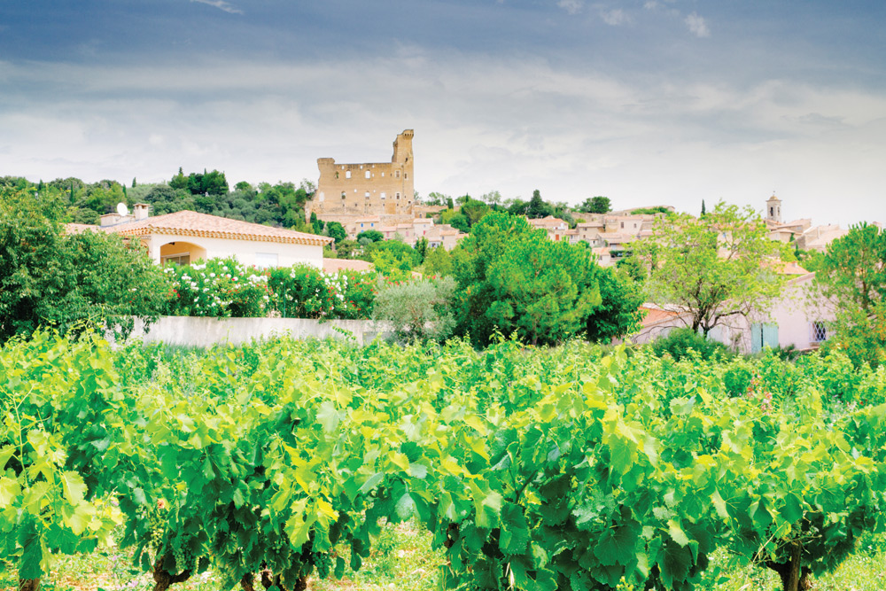 Vineyards-at-Chateauneuf-du-Pape, France.