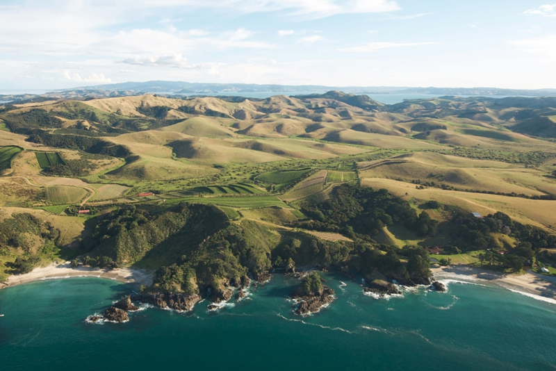 Aerial view of Man O' War Vineyards, Waiheke Island. Image courtesy of Man O