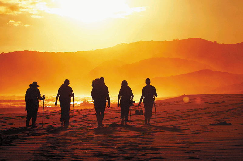 Groups are limited to a dozen like-minded travellers with a reasonable level of fitness. Image: Great Walks of Australia