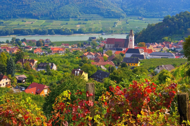 Sample local wines from the Spitz region. Image: Getty images