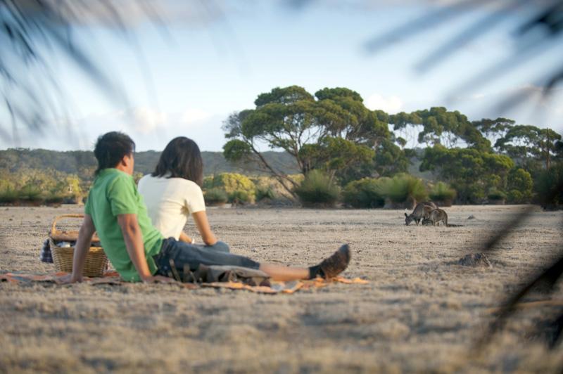 Flinders Chase National Park. Image: South Australian Tourism Commission