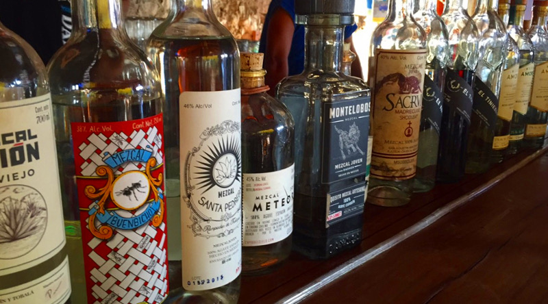local food in mexico - mezcal