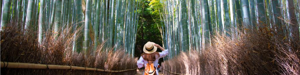 Solo Traveller in Kyoto, Japan